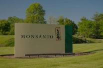 Monsanto hat mehr Macht als jede Regierung